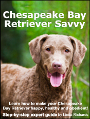 chesapeake-bay-retriever-ebook
